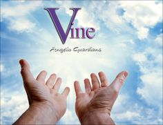 What Are You Doing before Christmas? Australian Vine Psychic reveals how her…