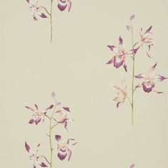 Sanderson - Traditional to contemporary, high quality designer fabrics and wallpapers | Products | British/UK Fabric and Wallpapers | Pollin...