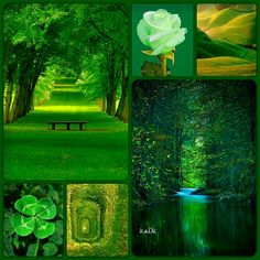 Nature - Collage made by KaDK's World