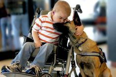 Dog Rescued From Death Row Dedicates Her Life to Disabled Boy.. Belgian Malinois has the uncanny ability to detect neurological changes—bringing comfort to a boy suffering from a terminal disease.  (This article made me all teary-eyed.  Dogs are so awesome.)
