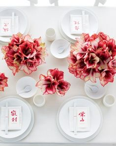 """Take the mantra """"less is more"""" to heart and let a single flower shine.These 'Showmaster' amaryllis make a huge minimalist impact"""