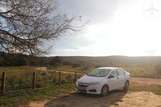 The trusty white Honda Ballade at Bontebok National Park Self Driving, South Africa, Honda, National Parks, Travel, Viajes, Destinations, Traveling, Trips