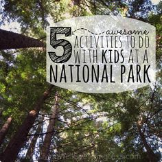 5 Awesome Activities To Do With Kids At A National Park Square Travel