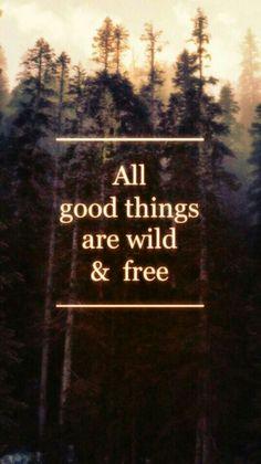 Wild & free quotes