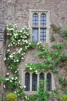 Cothay Manor - Flip - Picasa Web Albums Albums, Houses, English, Mansions, House Styles, Decor, Picasa, Homes, Decoration