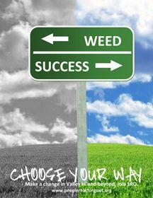 marijuana prevention pictures | Marijuana Quiz Incredible Marijuana Facts Marijuana Get Straight On ...