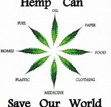 Image result for hemp pictures