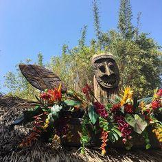 """Where the birds sing words and the flowers croon..."" //  #DoleWhip #TikiRoom #Disneyland #InTheTikiTikiTikiTikiTikiRoom by courtneyhammerton"