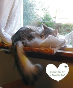 Curious Cats Window Perch by jenngv on Etsy
