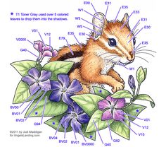 Copic Coloring Guide: Chipmunk & Vinca by Crafts - Cards and Paper Crafts at Splitcoaststampers Copic Marker Art, Copic Pens, Copic Art, Copics, Mandala Art, Copic Markers Tutorial, Grayscale Image, Coloring Tutorial, Up Book