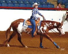Beautiful. love the colors! and I love seeing a western pleasure horse not dragging his feet at the lope!