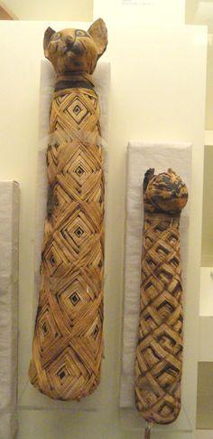 Cat Mummies, Egypt