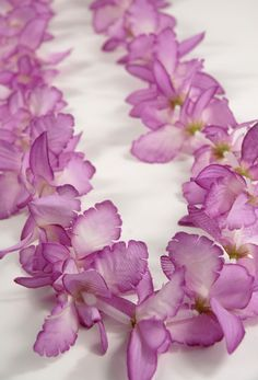 Orchids flowers petals leis lei making pinterest leis silk orchids flowers petals leis lei making pinterest leis silk flowers and orchid lei mightylinksfo