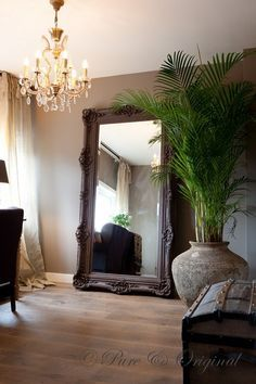 """Love this old looking Antique ish vintage mirror and plant so """" Huge mine look small still cute though!!:)"""
