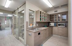 Veterinary Clinic and Hospital Design - Artistree Construction