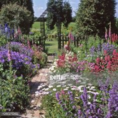 Image from http://cache4.asset-cache.net/gc/126021269-cottage-garden-in-full-flower-with-central-gettyimages.jpg?v=1&c=IWSAsset&k=2&d=HSwGN%2BjrZeVU%2FvtkbFg6QOtdV9BbXFNTMhz4bhka6rsET4xQcIt1yPYbIeTr7V6Z.