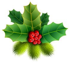 Boże Narodzenie, Holly, Pinheiro