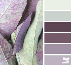 Natur Color Palettes