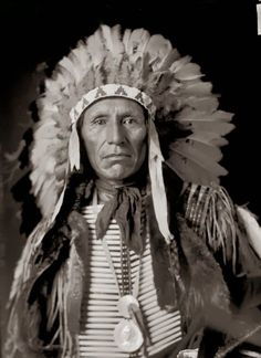 Eagle Dog Yankton Sioux
