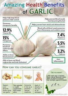 Garlic: 7 Proven Health & Therapeutic Benefits