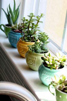 <p>Grönt är skönt. Och ännu skönare om man lyckas få sina gröningar att överleva. Här är 3 trendväxter som inte går att ta död på.</p>