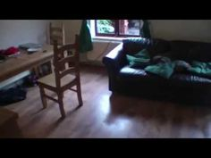 He Sets A Trap In His Living Room. What He Catches Will Give you Nightmares - NewsLinQ
