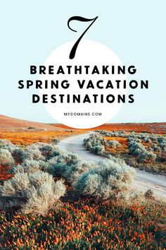 Where to go for spring break