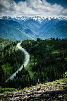 Olympic National Park, Washington #Dream Catchers