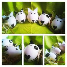 Bull Terrier Easter Eggs :)