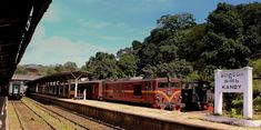 9 Tips on Taking the Train in Sri Lanka