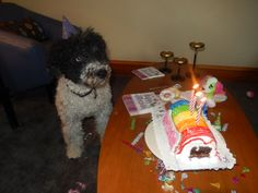 Wow! Mabel gets an Ice Cream B'Day cake. I can't wait to get a piece.