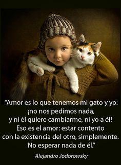 ... Amor es lo que tenemos mi gato y yo: ¡no nos pedimos nada, y ni él quiere cambiarme, ni yo a él! Eso es el amor: estar contento con la existencia del otro, simplemente. No esperar nada de él. Alejandro Jodorowsky.