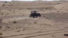 Abu Dhabi Desert Safari Dune Buggy