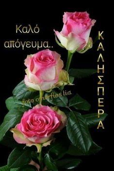 Happy Evening, Good Night, Seasons, Rose, Flowers, Plants, Art, Nighty Night, Kunst