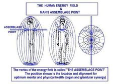 The human energy field quantum physics spiritual.  The vortex of Man's energy field is the heart.