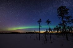 12 Fascinating Facts You Didn't Know About Finland's Iconic Wilderness