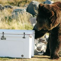 Yeti Coolers Tundra Marine Coolers  - for when we win the lottery.  These puppies are $$$$