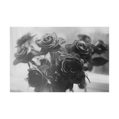 spellbound ❤ liked on Polyvore featuring backgrounds, pictures, black and white, flowers, photos and filler