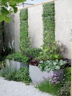 Den lilla örtagården i odlingslådor