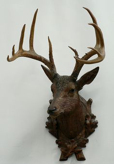 buy antique deer heads, stag heads and other trophys direct from the south of germany. in our gallery you'll find a selection a fine rustic and black forest antiques. Wood Deer Head, Black Forest Germany, Woodlands Cottage, Rena, Faux Taxidermy, Wood Carving, Decoy Carving, Oh Deer, Animal Heads