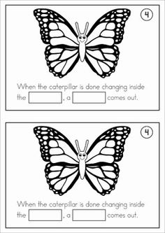 Butterfly Life Cycle cut and paste unit. A page from the unit: page 4 ...