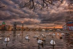 Amazing Prague by Igas Marius on 500px