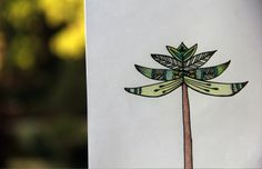 Ilustracion de Araucaria por Mariana Muñoz, diseñadora grafica. http://www.azu.cl/portafolio/