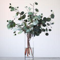 Real Touch Eucalyptus Arrangement in Large Glass Vase - Trend Innen Pflanzen 2020 Simple Flowers, Dried Flowers, Table Flowers, Flower Vases, Large Glass Vase, Large Flower Arrangements, Forever Flowers, Clear Vases, Vases Decor