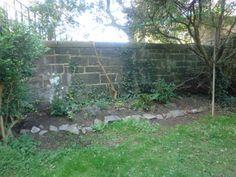 Beginning a border in a very shady Edinburgh north facing tenement garden