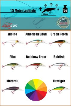Jackson Mini 50 Color Chart