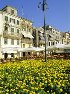 Corfu Town, Corfu, Ionian Islands, Greece