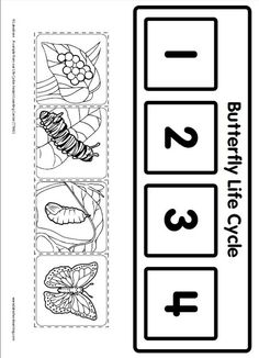 Life Cycle Learning Game from Lakeshore Learning: Children learn all about the life cycle of a butterfly!:
