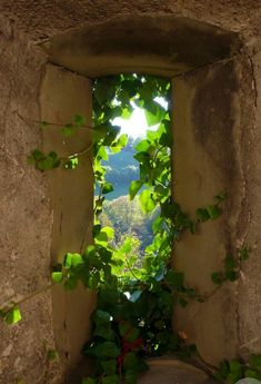 Auf dem Land - To The Country / Durchgang - Portal - Tor - Tunneln - Bogen - Höhle / Passage - Portal - Gate - Tunnels - Bow - Cave Beautiful World, Beautiful Places, Beautiful Pictures, Old Windows, Windows And Doors, Window View, Through The Window, Belle Photo, Nature Photography