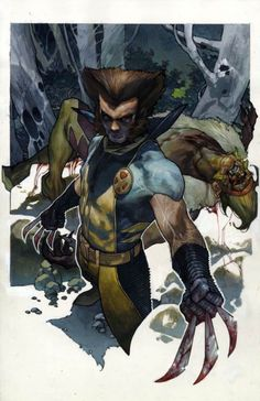 Wolverine vs. Sabertooth by Simone Bianchi *